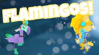 FLAMINGOS AND THE RETURN OF OTTERS! ~ animaljam playwild