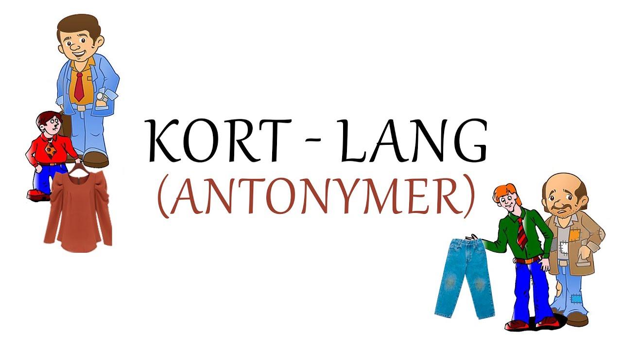 Norsk Sprak Kort Og Lang Antonymer Youtube