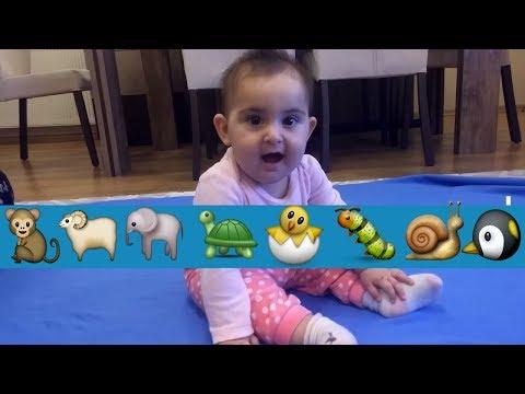 Bebek Oturma ve Emekleme Derslerinde, Çocuk Videoları