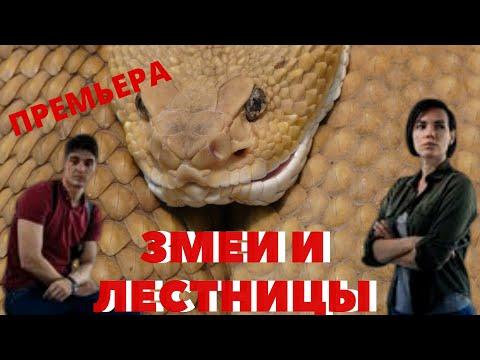Змеи и лестницы обзор с 1 по 4 серии.ПРЕМЬЕРА!!!