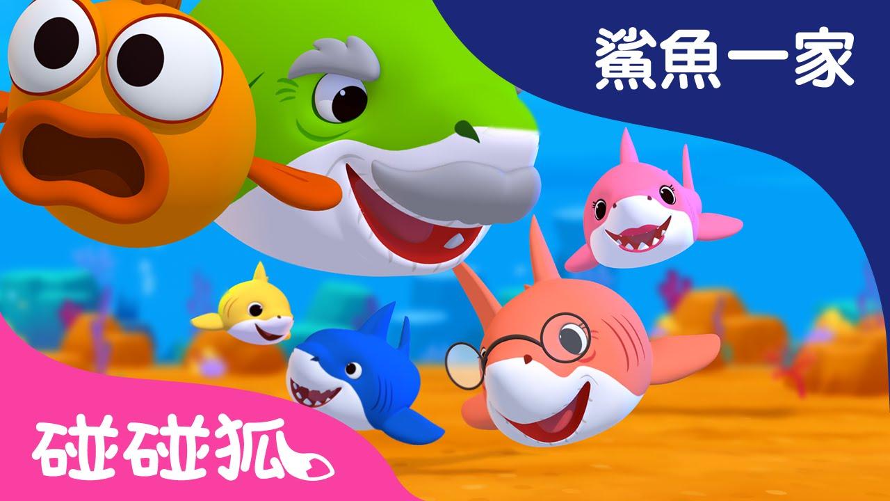 我們是鯊魚寶寶 | 鯊魚寶寶 | 鯊魚一家 |碰碰狐!兒童兒歌