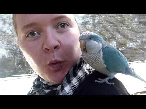 Andrea hat einen Vogel