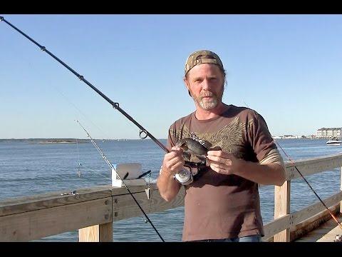 Frugal Fishing 5.6