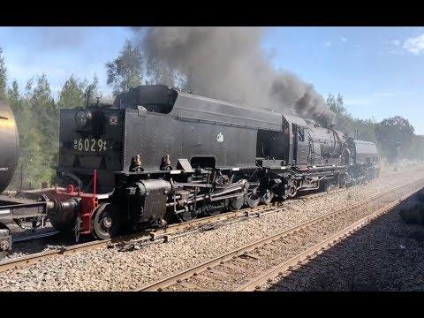 Australian Trains - 2018 Maitland Steamfest Great Steam Train Race
