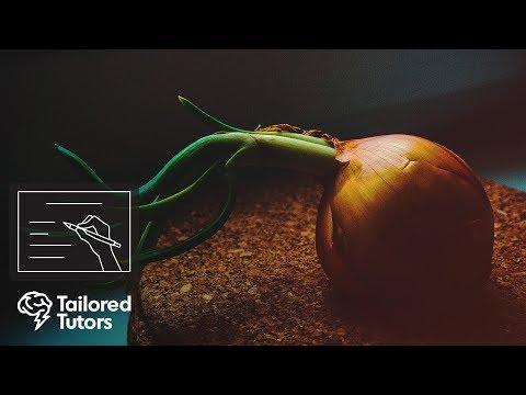 Plant Responses: Growth Factors