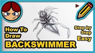 ► How to draw a BACKSWIMMER step by step easy ▬ Como dibujar una CHINCHE ACUÁTICA facil