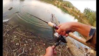 A caccia di Black bass in diretta! - Tu protagonista su Spinning TV
