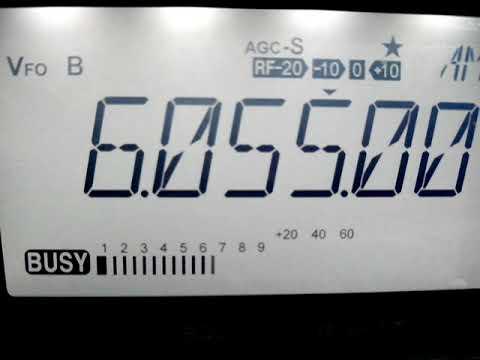 6055 KHz Radio Nikkei 1 (Japan)