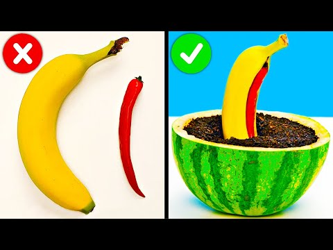 How To Regrow Everything || Plant Hacks To Grow Your Own Garden