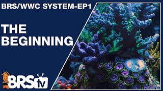 Ep1: How we setup a simple and stable reef tank   The BRS/WWC System