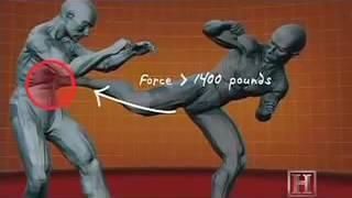 Обучение правильные удары ногами руками комбинации  MMA   Spinning Back Kick