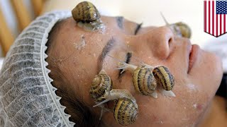 Snail cream: Snail slime beauty products set to turn mainstream in the U.S. - TomoNews