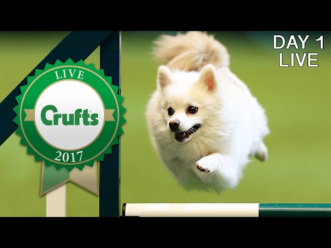 Day 1 Live | Crufts 2017