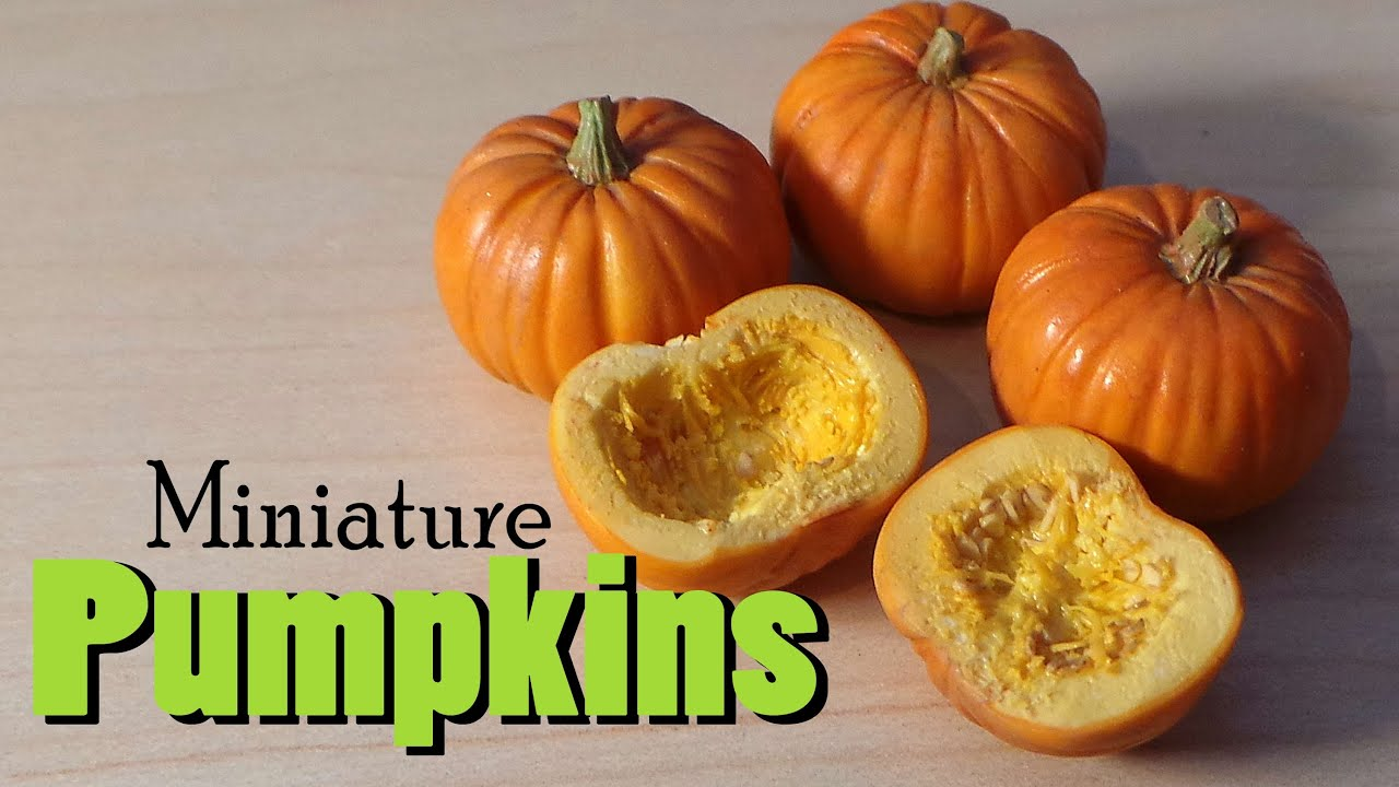 miniature pumpkins for fall halloween polymer clay tutorial youtube