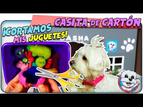 CORTANDO y ABRIENDO mis Juguetes en mi CASITA DE CARTÓN para PERROS 🐶Anima Dogs