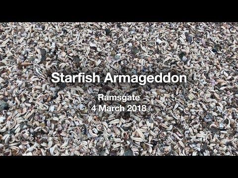Starfish Armageddon