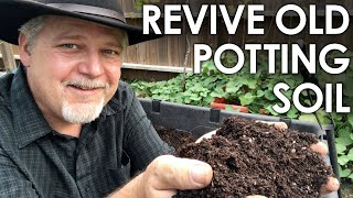 How To Re-Use Old Potting Soil - 4 Methods for Recycling || Black Gumbo
