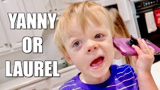 YANNY or LAUREL? Can Toddlers Hear it Too?!