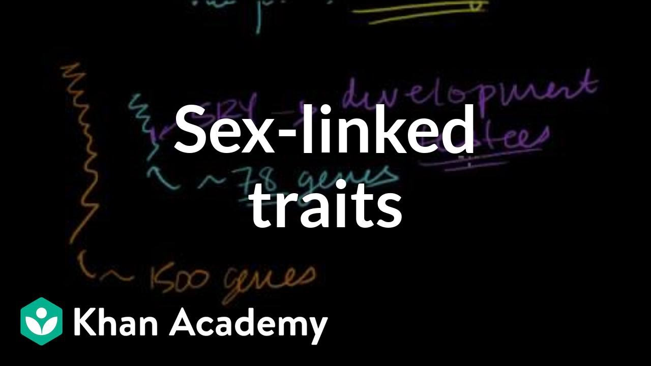 Sex-linked traits (video) | Sex linkage | Khan Academy