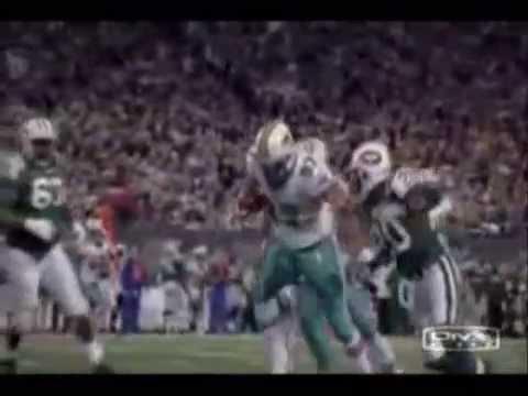 Miami Dolphins (2008 season tribute)