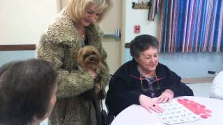 Therapy visit at Rosewood | Hairy Pawter