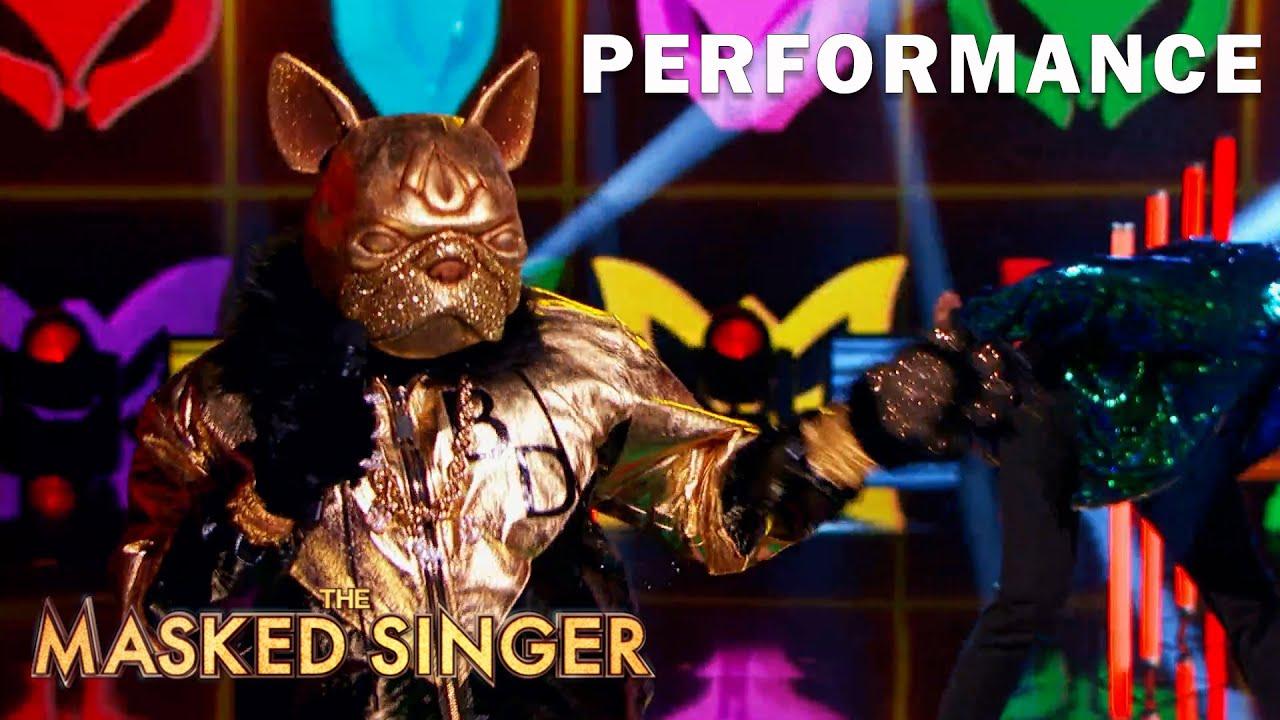 "Bulldog sings ""Candy Girl"" byNew Edition | THE MASKED SINGER | SEASON 5"