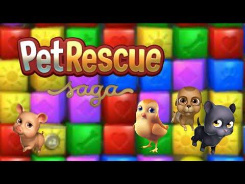 Pet rescue saga 🐕