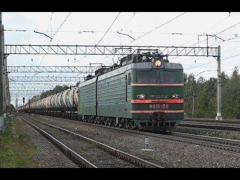 Грузовые поезда и зоопарк из локомотивов на станции Большой Двор Октябрьской железной дороги.