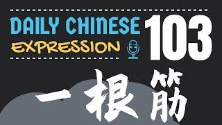 你是一根筋吗? -「一根筋」Daily Chinese Expression #103 大鹏说中文