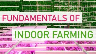 The Fundamentals Of Indoor Farming