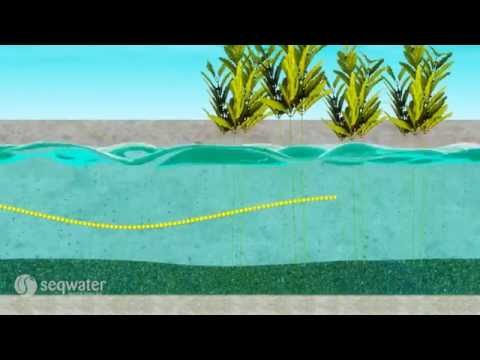 Seqwater explains: Decentralised schemes - a water source option