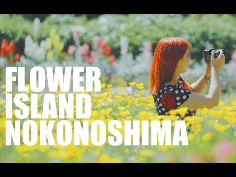 Flower Island! How To Visit Nokonoshima | 花の島、能古島での過ごし方!
