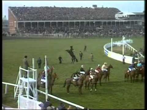 1974 Aintree Grand National Red Rum extended full race coverage