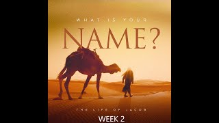 What is Your Name?  - Week 2 - August 29, 2021