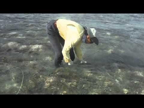 DIY Fishing In The BVI