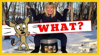 Is My PERSONAL Camping Toilet System THE BEST EVER? 😲
