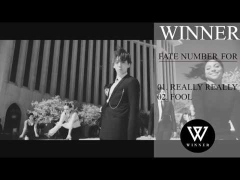 DOWNLOAD WINNER – FATE NUMBER FOR(MP3+ iTunes Plus AAC M4A)+ MV