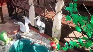 видео Отдых в Ейске у самого моря: описание, гостиницы в Ейске у моря
