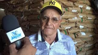EMATERCE Limoeiro dá inicio a distribuição de sementes para produtores rurais