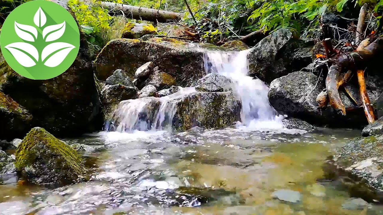Forest Waterfall.[10 hours] Mountain Stream Sounds for Sleep