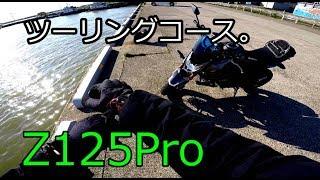 【Kawasaki Z125Pro】Z125、ツーリングコースを走る。【モトブログ Motovlog】 thumbnail