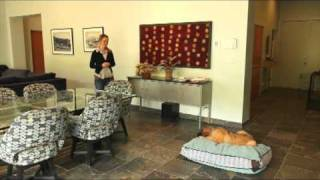 Dog Training: House Manners