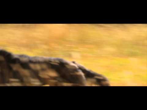 Druid Peak [Trailer] - Florida Film Festival 2014