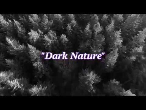 """Dark Nature""  RavenzCraft Arts short experimental nature art video"