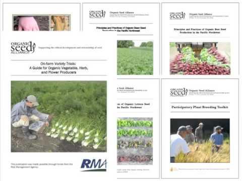 Understanding the NOP Seed Rule & Sourcing Organic Seed Webinar