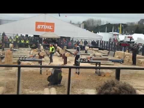 Logger Skills Mystery Creek 2013 Hotsaw v2