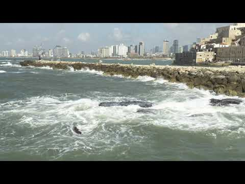Port Of Jaffa, Israel