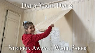 Daily Vlog :How t๐ remove wallpaper easily Day 2 of 7 day Transformation Challenge