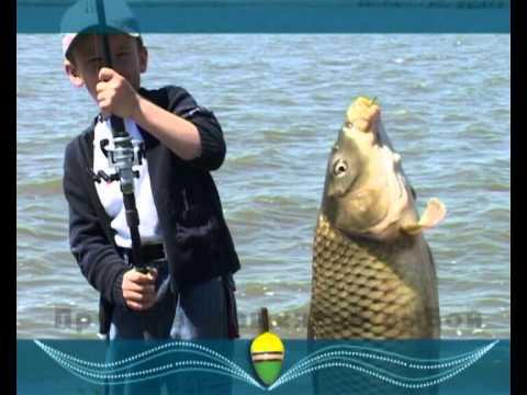 рыбная ловля в волгодонске