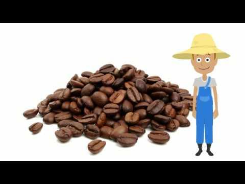 Direct trade coffee, fair trade coffee, helping change the world